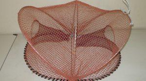 ツブタコ籠